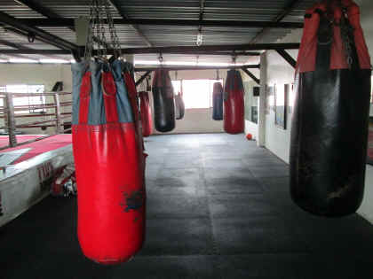 WKO World Kumite Organization Gym 2013